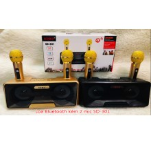 LOA BLUETOOTH SDRD - 301